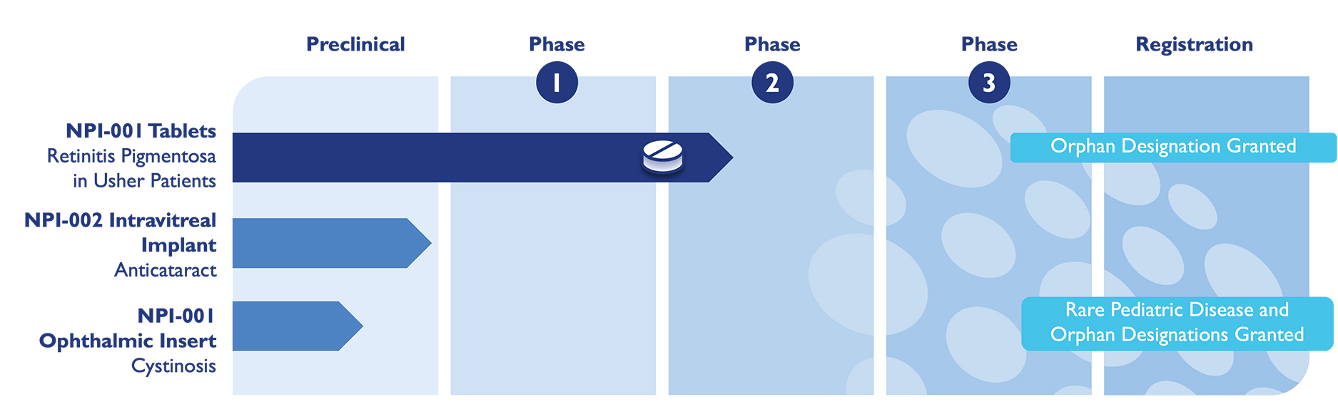 a graphic showing the pipeline stages from Preclinical through Phases 1, 2, 3, and Registration for each project